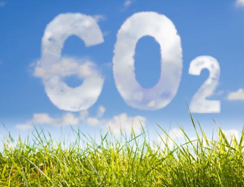 Efficienza produttiva = minore impatto ambientale