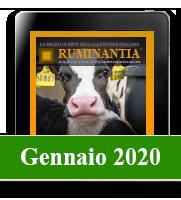 Ruminantia mese - Gennaio 2020