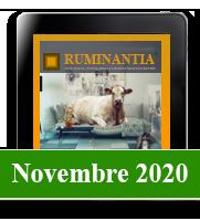 Ruminantia mese - Novembre 2020