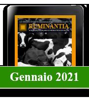 Ruminantia mese - Gennaio 2021