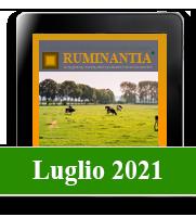 Ruminantia mese - Luglio 2021